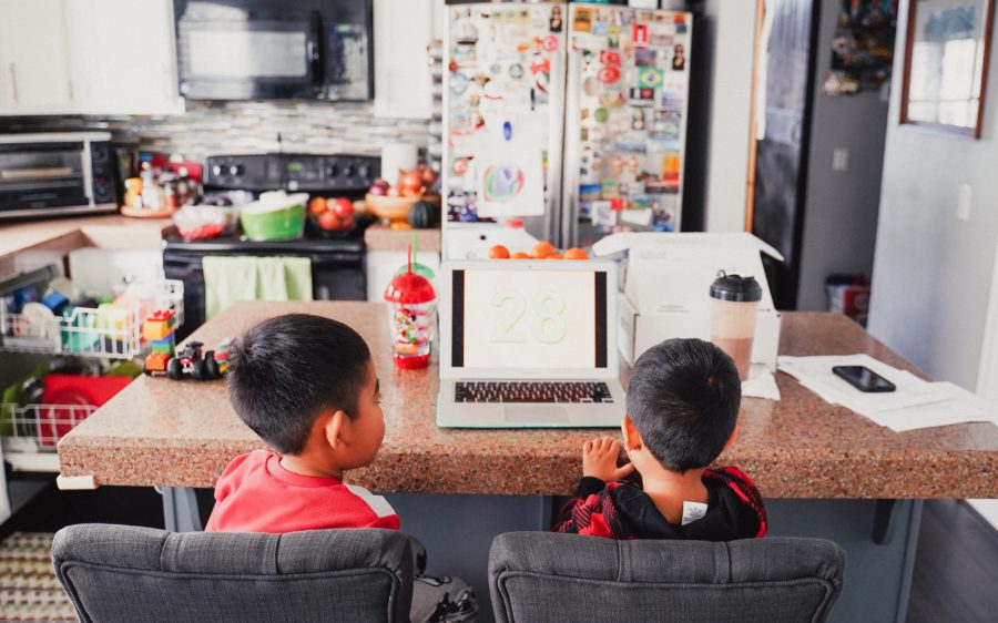 Young boys working at home on a computer.